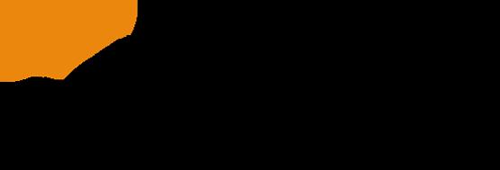 logoiceport
